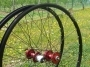 MTB Disc Wheel  SS28